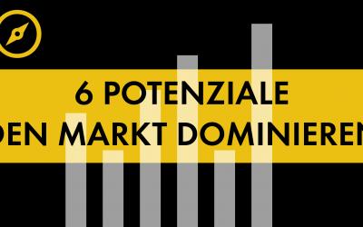 #003 6 Potenziale / den Markt dominieren